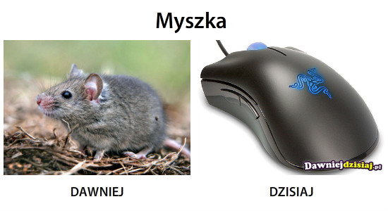 Myszka –