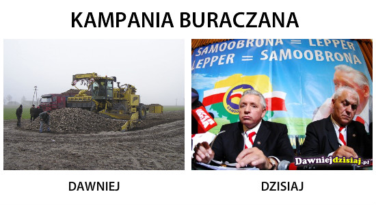 KAMPANIA BURACZANA –