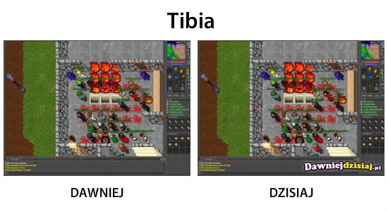 Tibia –