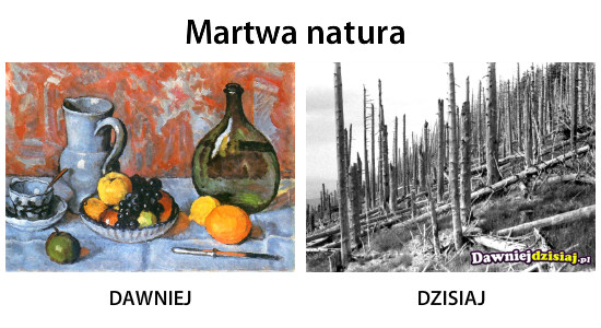 Martwa natura –