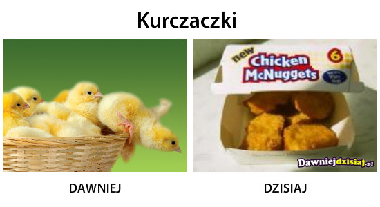 Kurczaczki –
