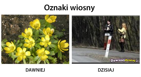 Oznaki wiosny –