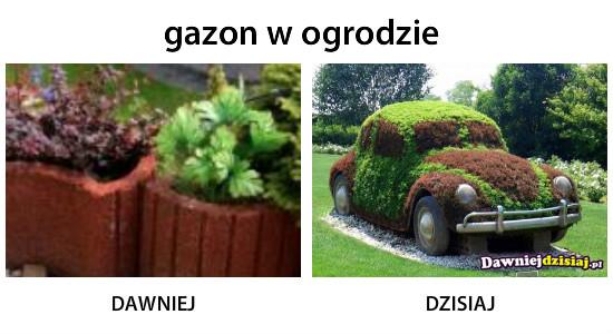 Gazon w ogrodzie –