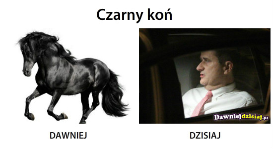 Czarny koń –