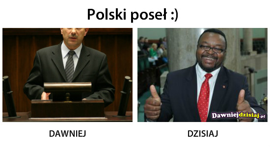 Polski poseł :) –