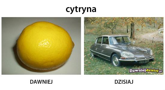 Cytryna –