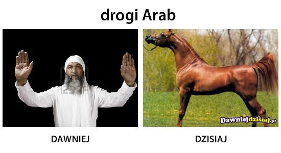 Drogi Arab –