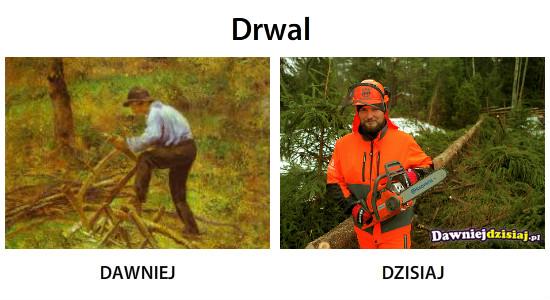 Drwal –