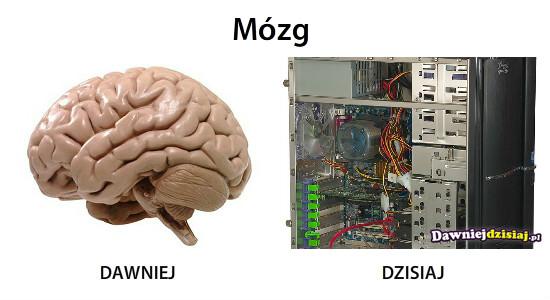 Mózg –