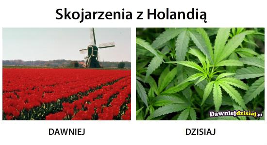 Skojarzenia z Holandią –