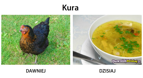 Kura –