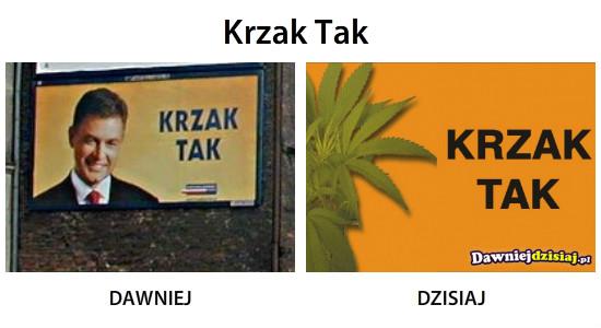 Krzak Tak –