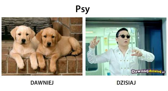 Psy –