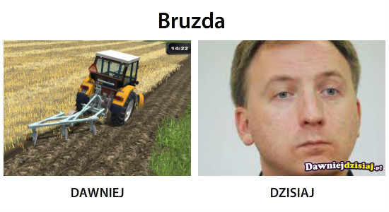 Bruzda –
