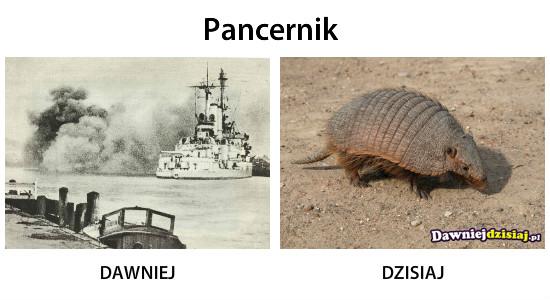Pancernik –