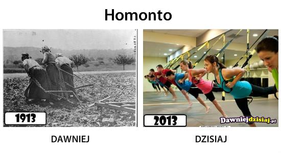 Homonto –