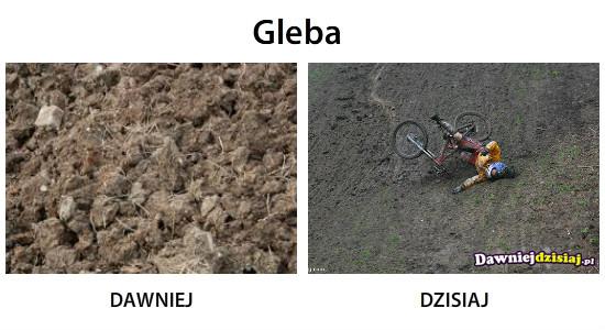 Gleba –