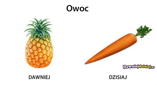 Owoc –