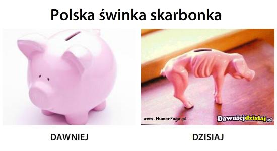 Polska świnka skarbonka –