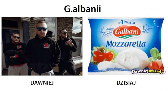 G.albanii –
