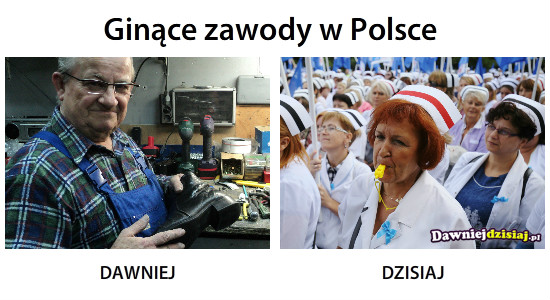Ginące zawody w Polsce –
