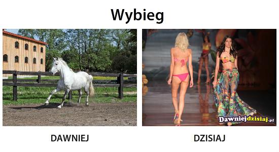 Wybieg –