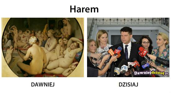 Harem –